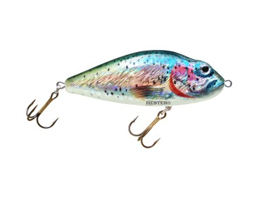 158 Rainbow Trout