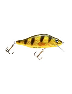 038 Gold Perch