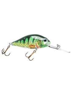 065 Bottle Green Perch