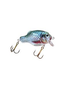 193 Green Roach